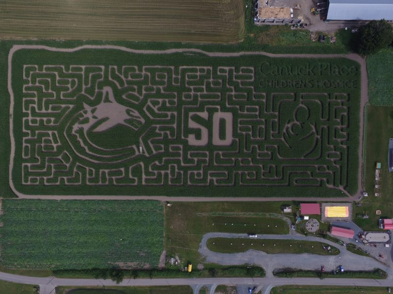 Chilliwack Corn Maze 2019 design in partnership with Canuck Place Children's Hospice. Celebrating 50 years of the Canucks