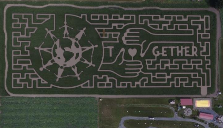 corn maze design